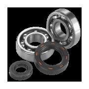 Rodamientos de Motor para Quad ATV UTV | Quadest